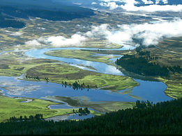 Yellowstone National Park 14.jpg