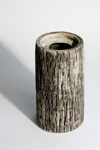 cyl-bark5-r23.jpg