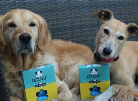 POOCH PROFILE: MEET IZZY AND FREDDIE