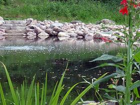 aerated pond.JPG