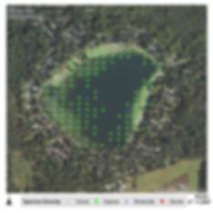 Plant Map.jpg