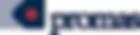 Promas Logo.png