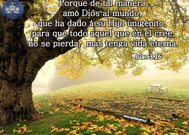 Juan 3.16.png