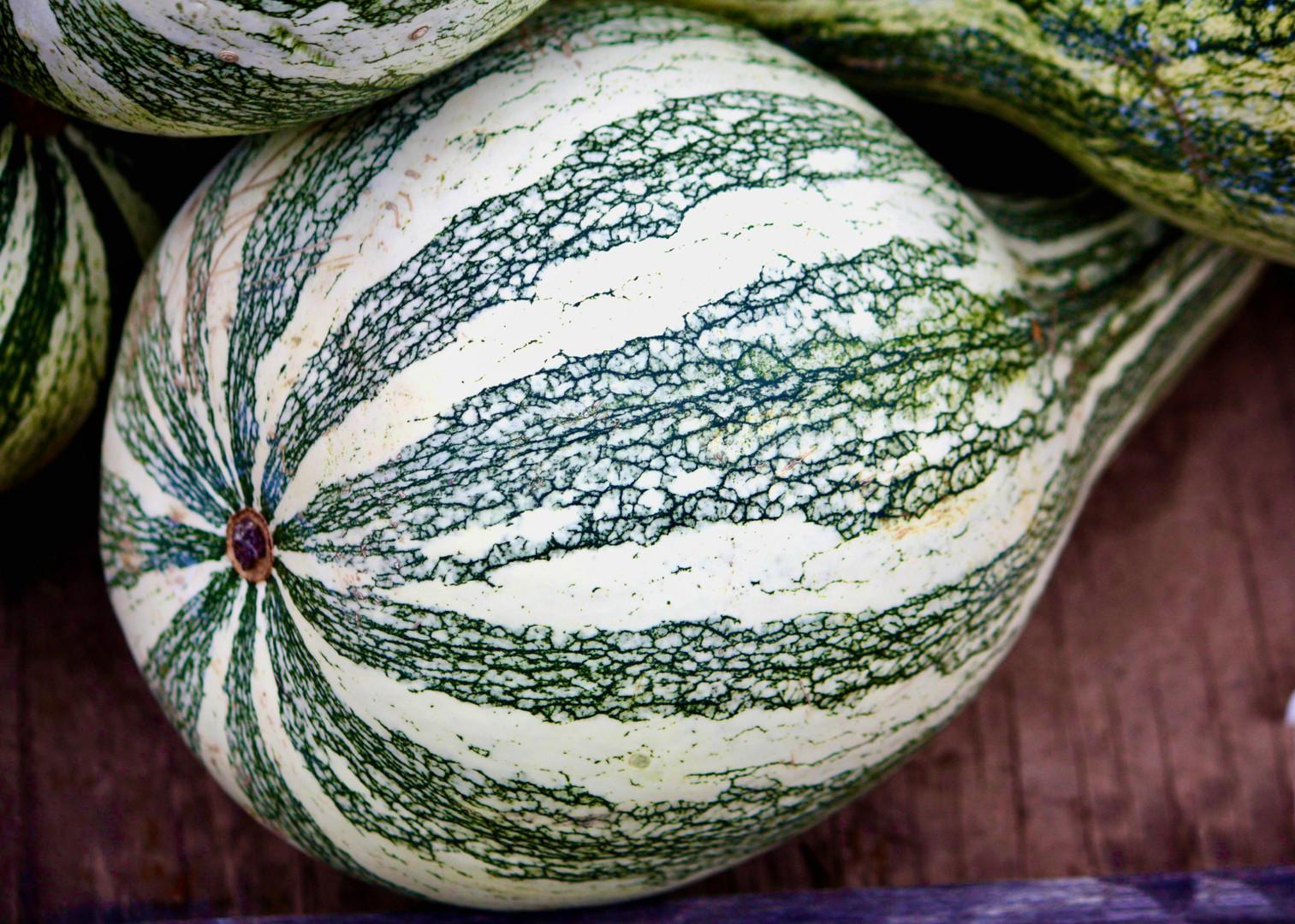 Fall Farm Foods - Green Squash 1