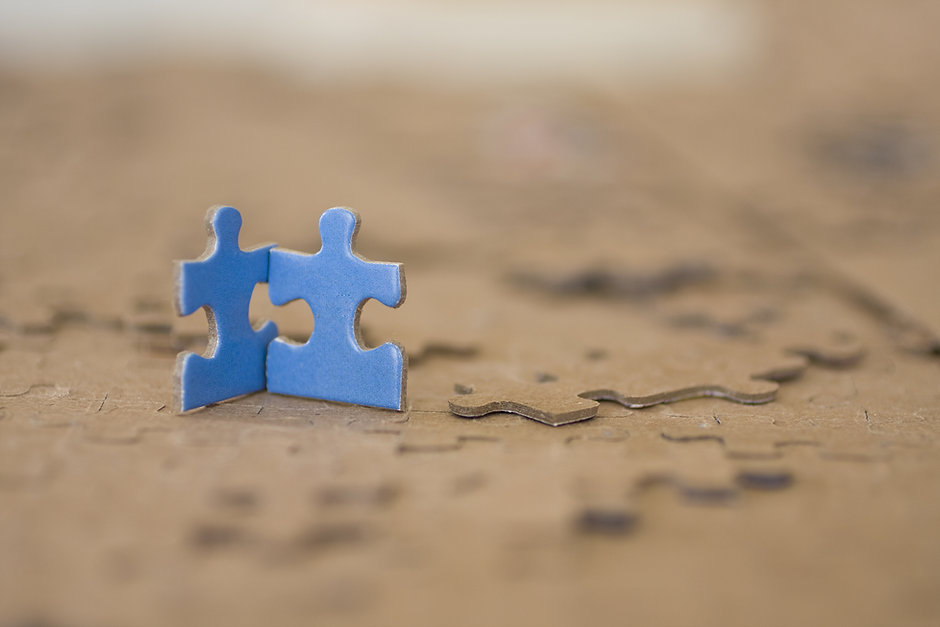 Two Blue Puzzle Pieces.jpg