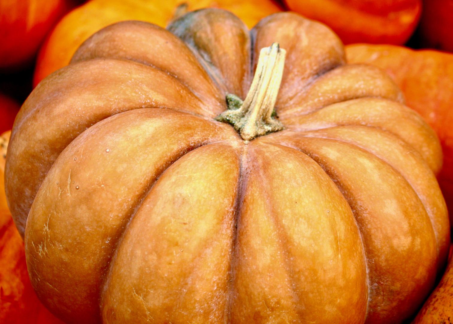 Fall Farms Foods - Pumpkin 1.jpeg