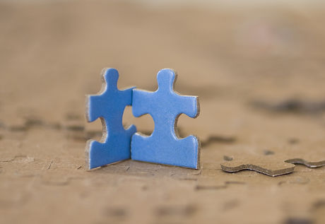 Two Blue Puzzle Pieces_edited.jpg