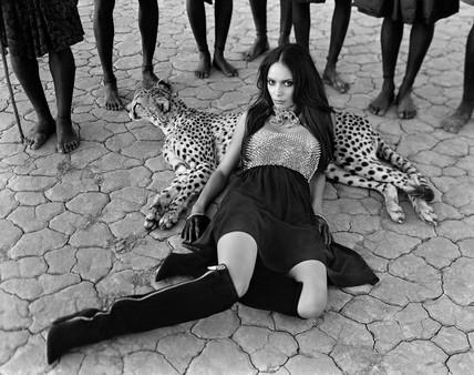 (cheetah) namibia 3467 001 r2.jpg