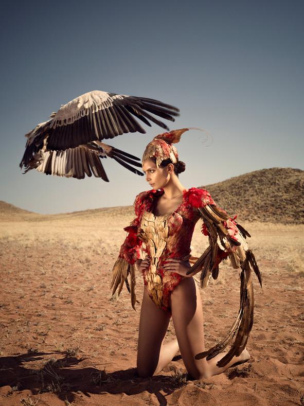(vulture) image 0641 r.jpg