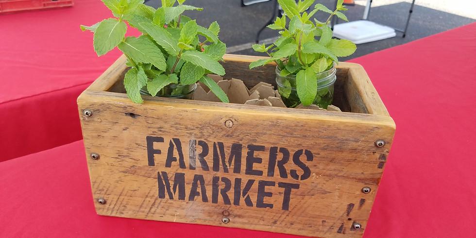 Somerset Farmers Market - July 1st