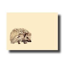 Bespoke Hedgehog
