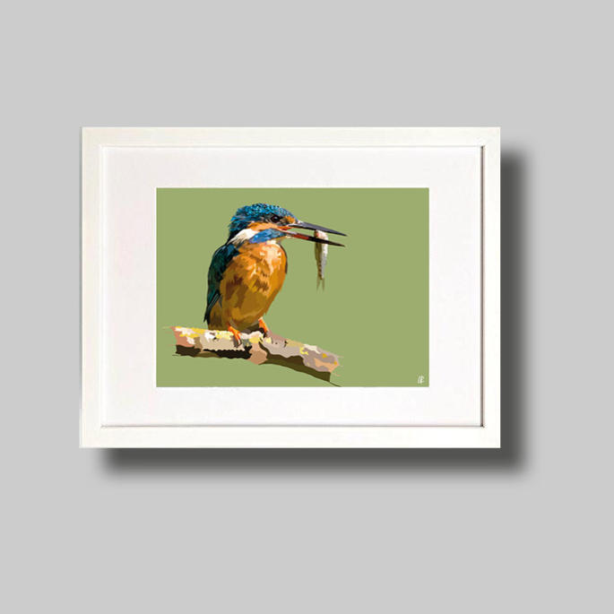 English Kingfisher