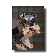 Diva on family Scottish tartan