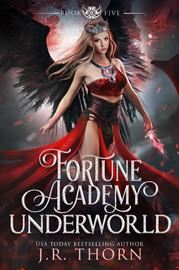 Fortune Academy Underworld: Book 5