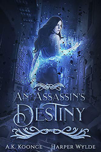 An Assassin's Destiny