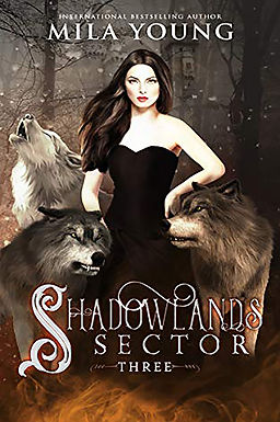 Shadowlands Sector