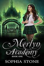 Merlyn Academy 1.jpg