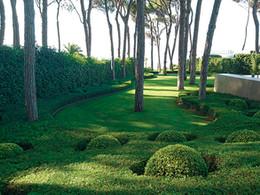 Anvendelsen af planter i den moderne have