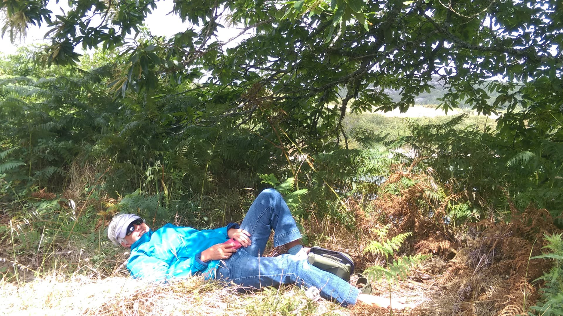 Lying under a tree