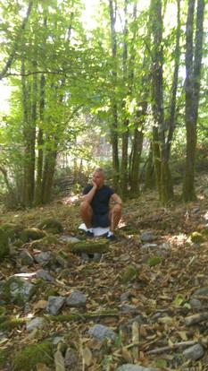 Sitting n chestnut trees