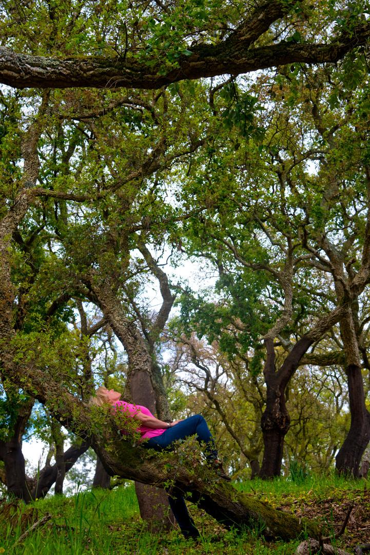 Lying in a cork oak forest, forest bathing