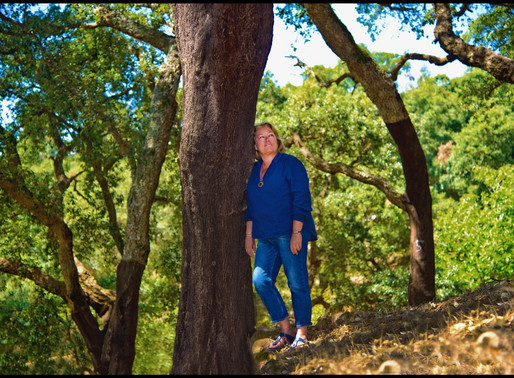 Forest Bathing Algarve