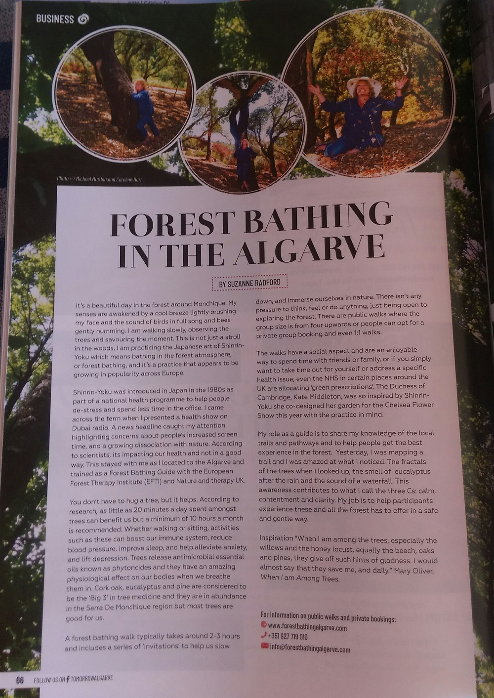 Forest Bathing article Tomorrow. Sept 19