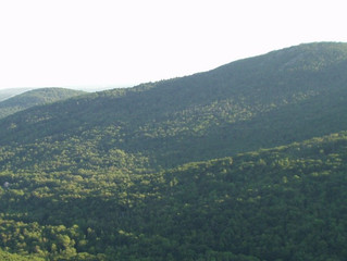 HOSMER BROOK PROPERTY ADDED TO RAGGED MOUNTAIN PRESERVE