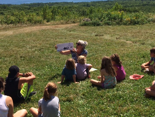 Blueberry Tales on Beech Hill