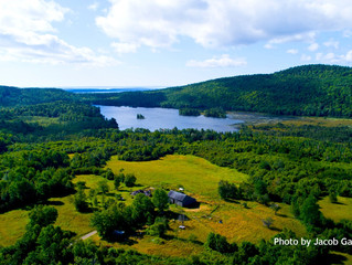 METCALF-FERGUSON FARM ON NORTHPORT's KNIGHT POND CONSERVED