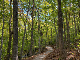 Round the Mountain Trail opens on Ragged Mountain