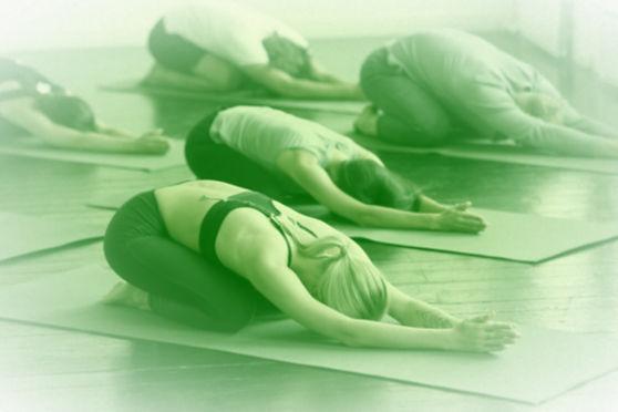 Beginners Yoga, Gentle Yoga