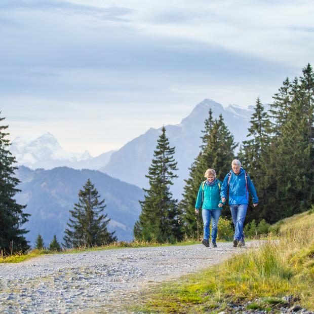 Spaziergang auf dem Höhenweg