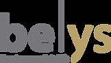 BU_Logo_bundles2018_0000_be-ys.png