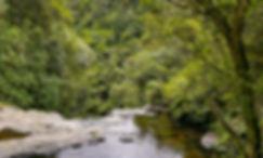 Homepage-river-2.jpg