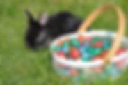 konijn met paaseitjes 5g.JPG