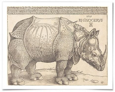 "Print: Albrecht Dürer, The Rhinoceros, 1515 - 16x20"" Poster"