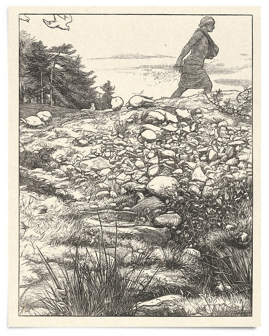 16x20 Print: The Sower (The Parables of Our Lord...) - John Everett Millais 1864