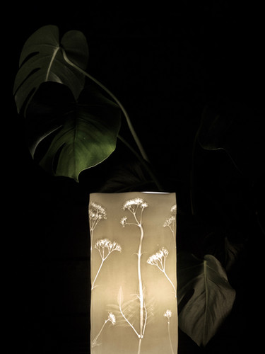 19. Pink botanicle lamp