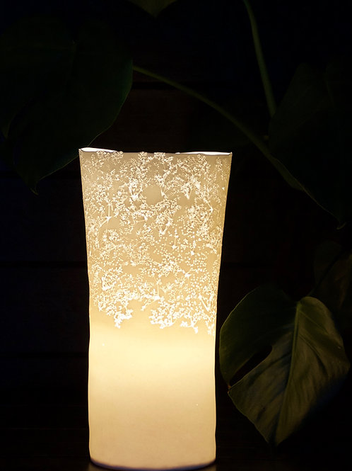 31. Elderflowerlamp