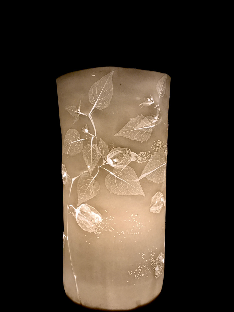 55. Physalis lamp