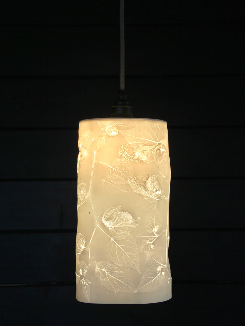 16. Cape goosebury pendant light