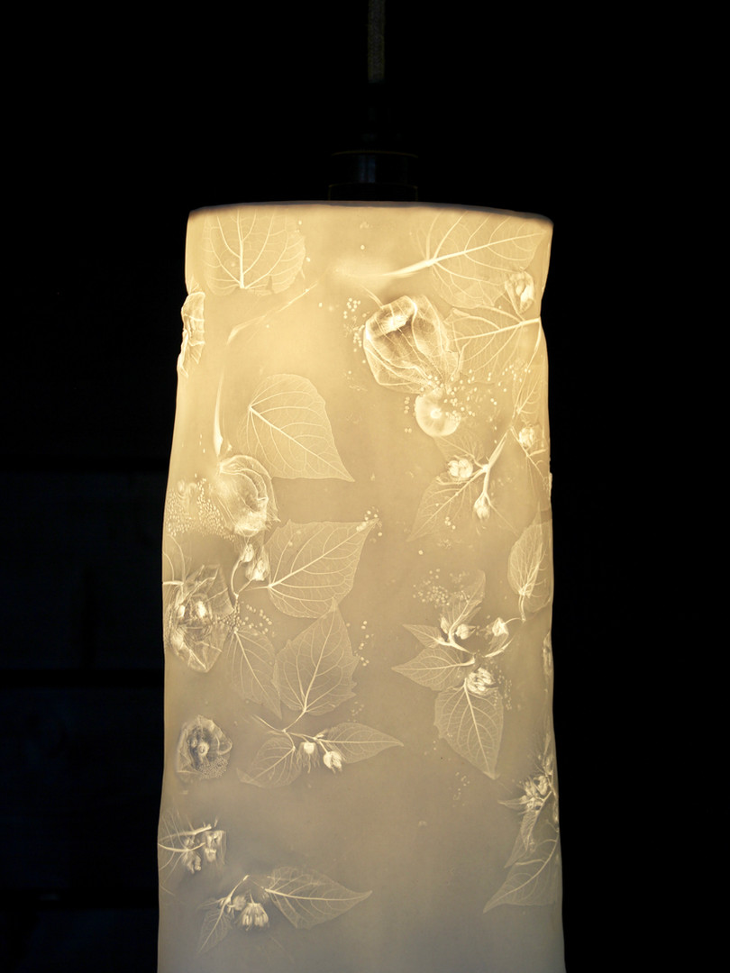 22. Cape goosebury pendant light