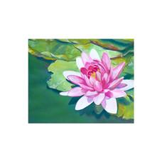 multimedia flower.jpg
