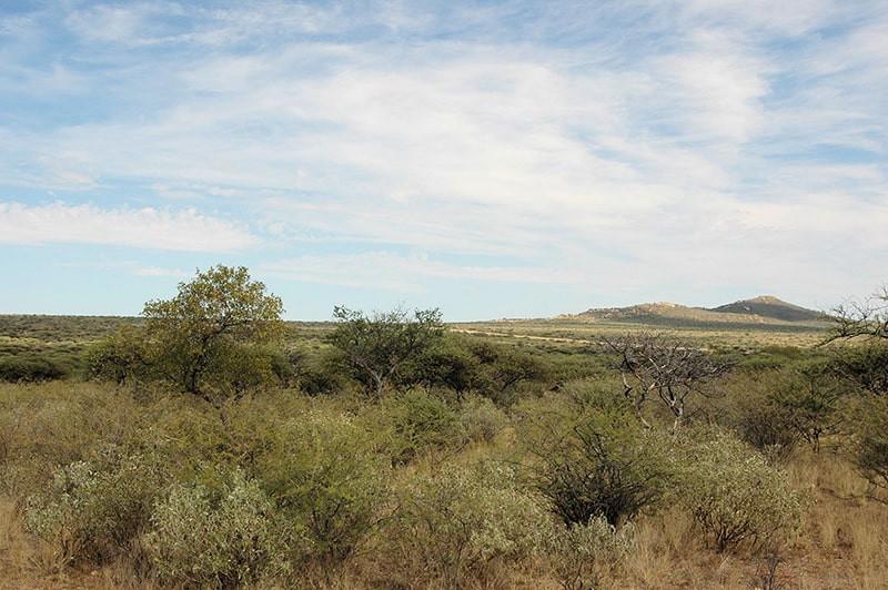 Landschaft-jagdfarm-namibia-kashjuna-hun