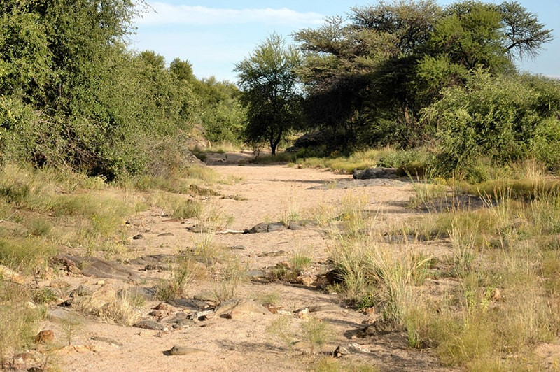 landschaft-2-jagdfarm-namibia-kashjuna-h