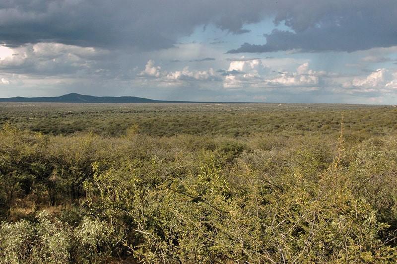 landschaft-panorama-jagdfarm-namibia-kas