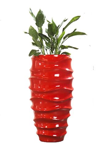 Planter Geisha 2002