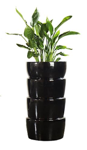 Planter Multiple 2006