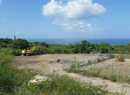 Nevis Island Administration heartened by progress of geothermal project